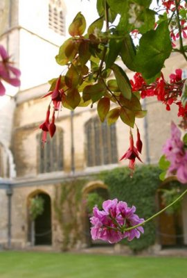 Flowers in the Cloister