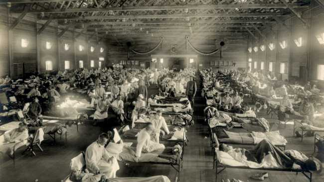 Image of Influenza - 1918/19 and Now