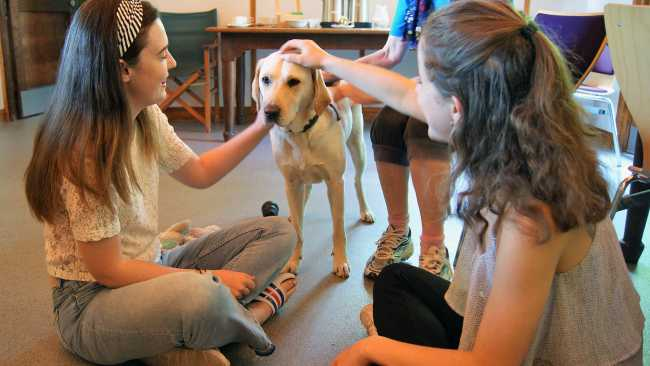Image of Photo of students and a golden Labrador