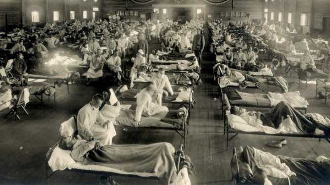 Image ofInfluenza - 1918/19 and now