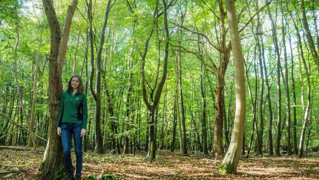 Image ofStudent helps Forestry Commission plan for the future