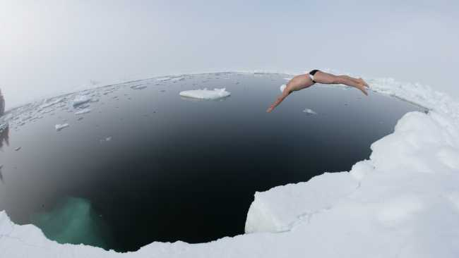 Image ofAlumnus' Arctic swim in new documentary