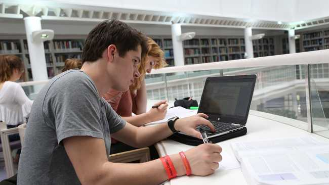 Image of Students working in the Library