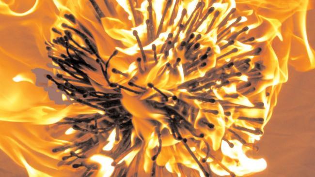 Image of Firebug by Sand Laureson