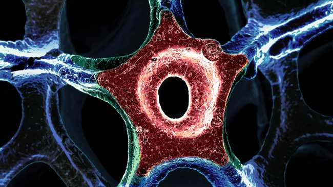 Image of Chemical Engineering image