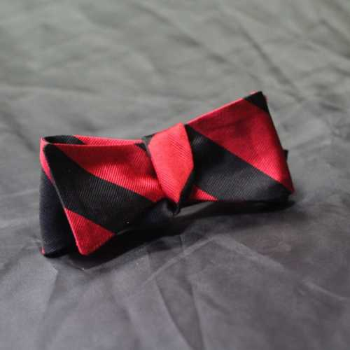 Image of Bow tie