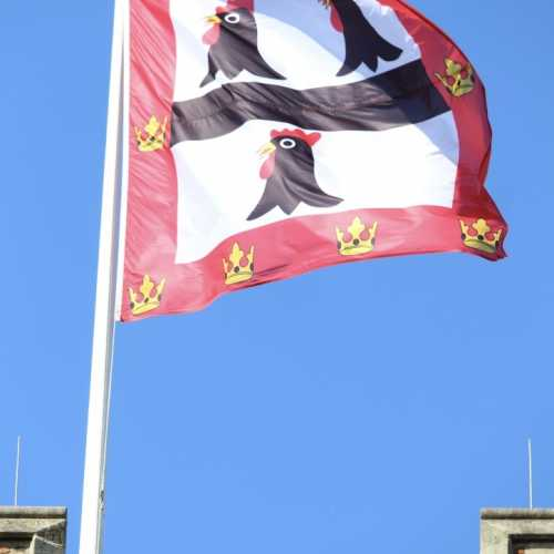 Image of College Flag