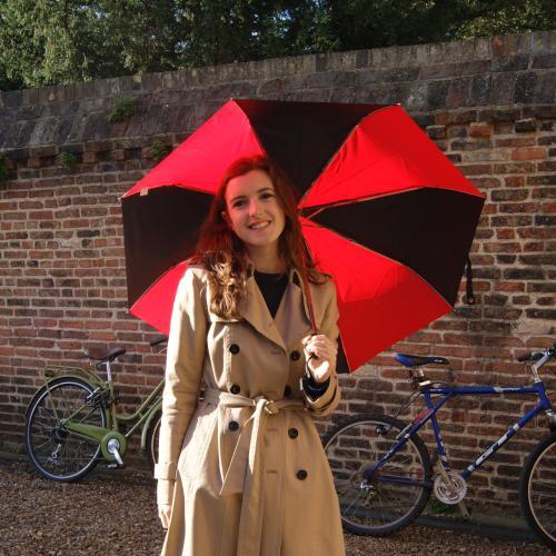 Image of Umbrellas
