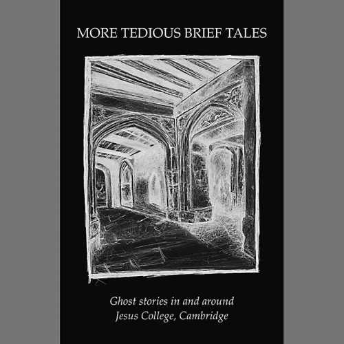 Image of More Tedious Brief Tales